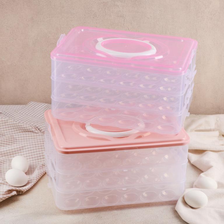 Купить контейнер для хранения яиц 31,5 x 22 x 17,5 см