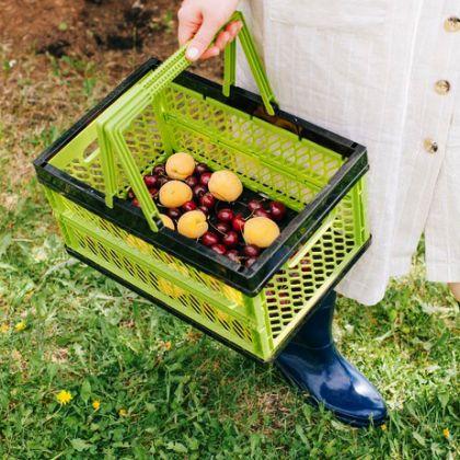 Корзина прямоугольная для овощей складная, 15 л, 37,5 x 25 см