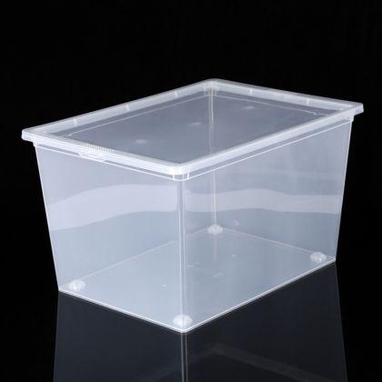 Ящик с крышкой прозрачный, 50 л, 53 х 37 х 30 см